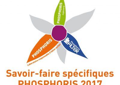 Notre conférence de fin d'année – Qu'est-ce que Phosphoris?