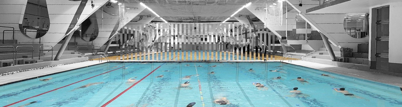 阿兰卡聂绿色实验室获得Charenton-le-pont泳池改造项目
